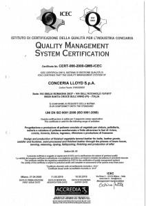 Lloyd_certif_9001-725x1024